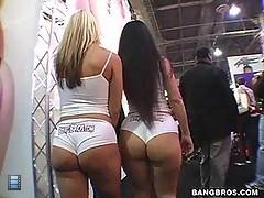 AssParade - Ass Worship in Vegas! [6 movies]