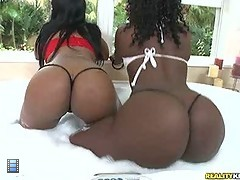 I give you zena and chanel. two chicks that tore the whole scene down with their amazing big asses.. [4 movies]