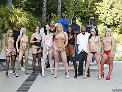 big black dicks fucking white slits [15 pictures]