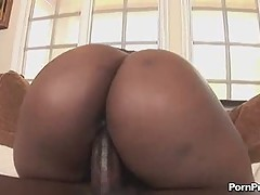 Big asses [4 movies]