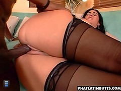 Watch These Latin Asses Get Jammed Full of Thick Cock! [6 movies]