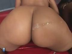 Big big asses. [4 movies]