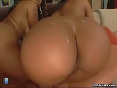 Fat big ass. [4 movies]