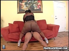 gigantic black girl eats cock [6 movies]